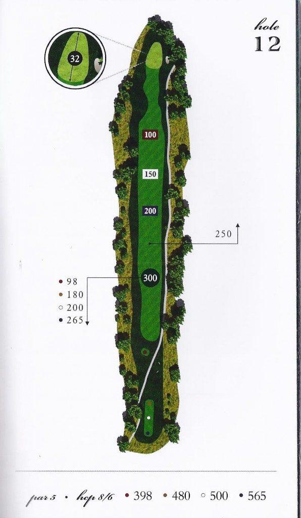 Hole-12-map